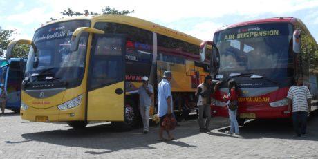 Dukung Pengoperasian Bus Publik, Pemerintah Daerah Harus Bangun Ratusan Halte