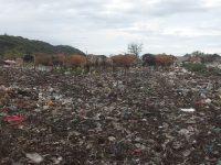 Atasi Sampah di Gili Trawangan, KLU  Minta Lahan ke Pemprov