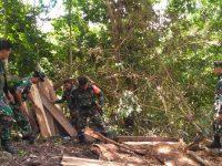 Ratusan Balok Kayu yang Diduga Hasil Illegal Logging Ditemukan di Bima
