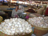 Kurangi Impor, Petani NTB Diajak Maksimalkan Penanaman Bawang Putih Lokal