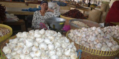 Impor Bawang Putih dari China Disetop, Harga Melonjak Naik