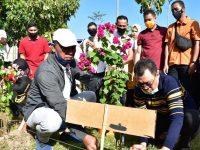 Lingkungan Islamic Center Kembali Dipercantik