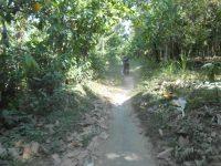 Hasil Kebun Melimpah, Petani di KLU Masih Belum Untung