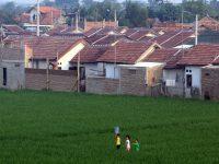 500 Hektar Lahan Produktif di NTB Hilang Tiap Tahun