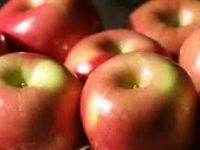 Dinas Pertanian Sarankan Warga Konsumsi Buah Lokal