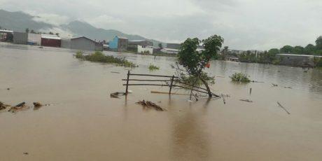 77 Hektar Sawah Terendam Akibat Banjir Bima, 15 Hektar Puso