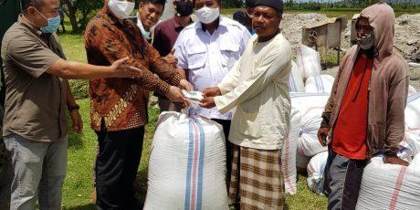 Di Tengah Pandemi, Bulog NTB Lanjutkan Pembelian Gabah Petani