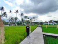 Melihat Kreativitas Warga di Jateng, Sawah Garapan Disulap Jadi Destinasi Wisata
