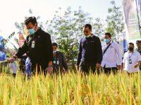 Gubernur : Kita Tingkatkan Produktivitas Pertanian dengan Teknologi dan Industrialisasi