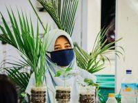 Lahan Anda Sempit, Ayo Tanam Sayur dengan Sistem Hidroponik