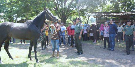 Gubernur : Sekolah Berkuda Perlu Didirikan di NTB