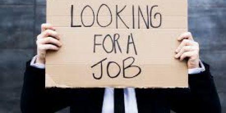 Job Fair, Ditargetkan akan Kurangi Pengangguran Sebesar 30 Persen