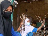 Di Tengah Pandemi, Kerajinan Pelepah Kelapa Desa Lelede Tembus Pasar Amerika Serikat