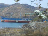 Ekspor Konsentrat Newmont ke Jepang dan Korea Lancar