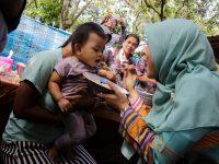 Posyandu Keluarga Diharapkan Bisa Terwujud di Semua Dusun